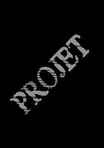 file-pdf-51