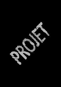 file-pdf-242