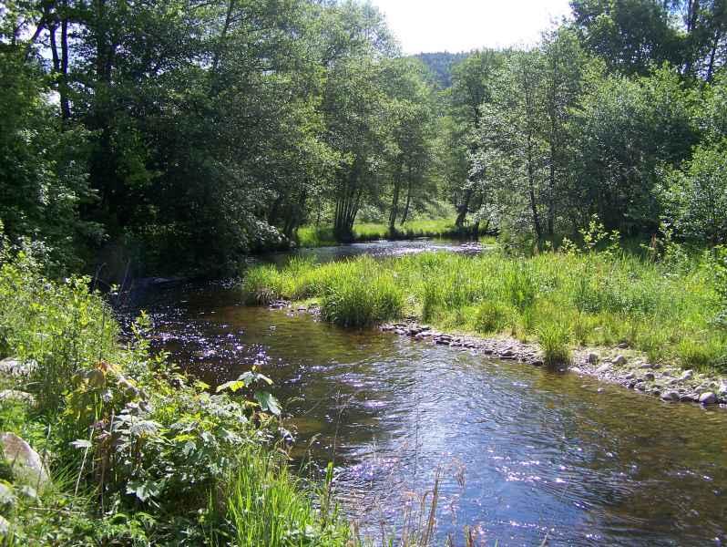 Rivière la Cleurie